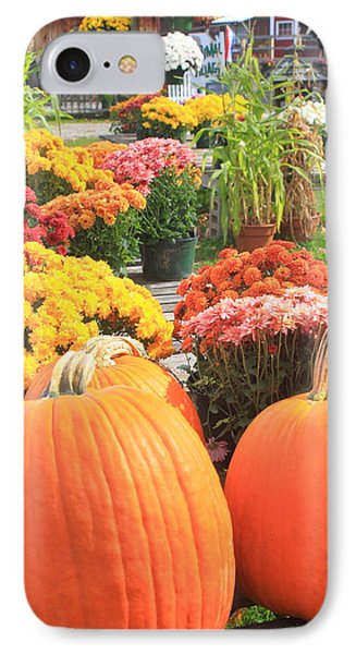 Pumpkins And Mums In Farmstand IPhone Case by John Burk