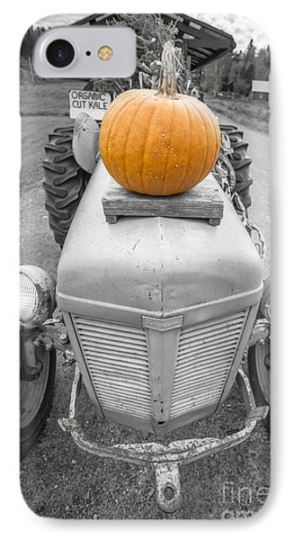 Pumpkins For Sale Vermont IPhone Case by Edward Fielding