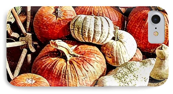 Pumpkins In The Barn IPhone Case by MaryLee Parker