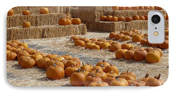 Pumpkins On Bales IPhone Case by Carol Groenen