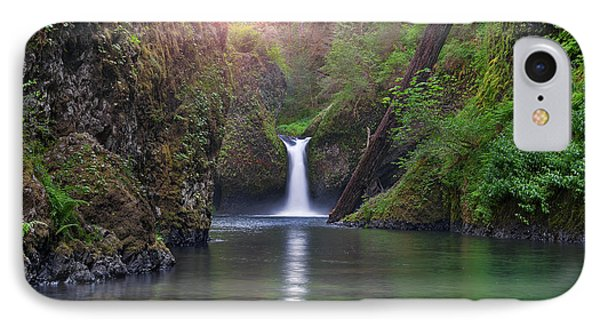 Punch Bowl Falls Phone Case by David Gn