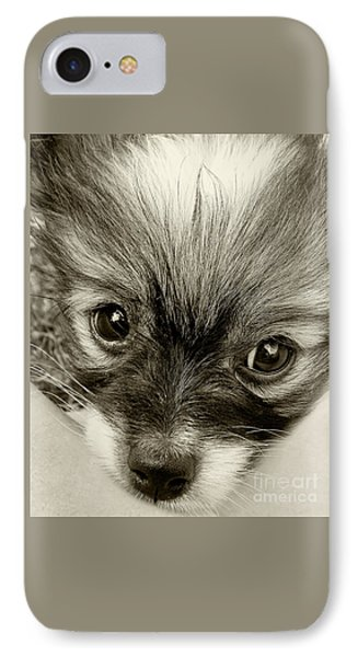 Puppy In Sepia By Kaye Menner IPhone Case by Kaye Menner