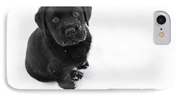 Puppy In The Snow IPhone 7 Case