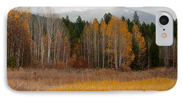 Purcell Gold Phone Case by Idaho Scenic Images Linda Lantzy