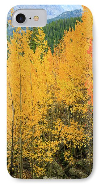 IPhone 7 Case featuring the photograph Pure Gold by David Chandler