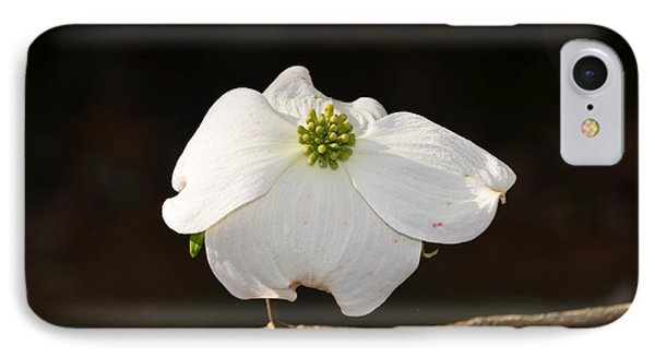 Pure White IPhone Case by Linda Brown