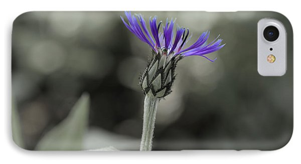 Purple And Grey IPhone Case by David Stasiak