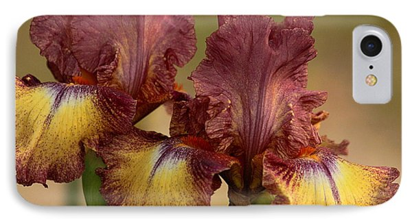 IPhone Case featuring the photograph Purple And Yellow Bearded Iris by Sheila Brown