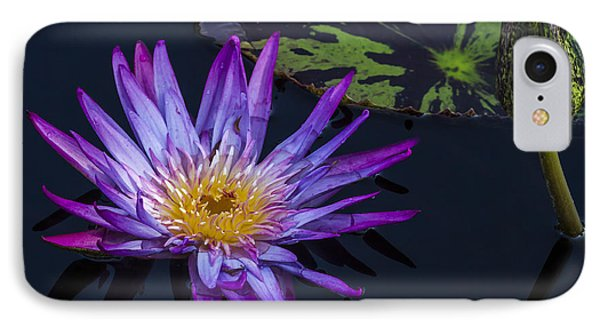 Purple And Yellow Water Lily IPhone Case by Lindley Johnson
