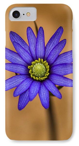 Purple Anemone IPhone Case