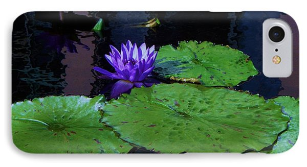 Purple Blue  Lily Phone Case by Eric  Schiabor