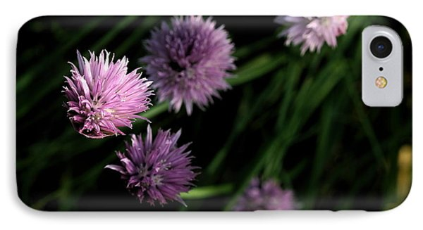 IPhone Case featuring the photograph Purple Chives by Angela Rath