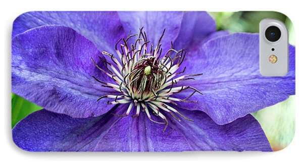 IPhone Case featuring the photograph Purple Clematis by Chrystal Mimbs