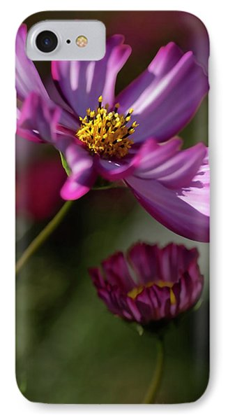 IPhone Case featuring the photograph Purple Coleus by Michael Flood