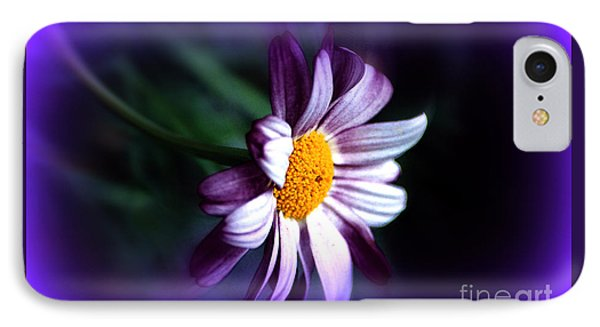 IPhone Case featuring the photograph Purple Daisy Flower by Susanne Van Hulst