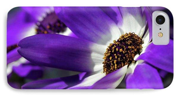 Purple Daisy Phone Case by Sabrina L Ryan