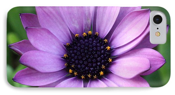 Purple Daisy Square Phone Case by Carol Groenen