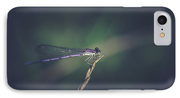 IPhone Case featuring the photograph Purple Damsel by Shane Holsclaw