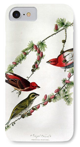 Purple Finch Phone Case by John James Audubon