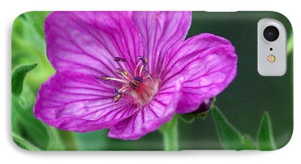 Purple Flower 2 Phone Case by Marty Koch