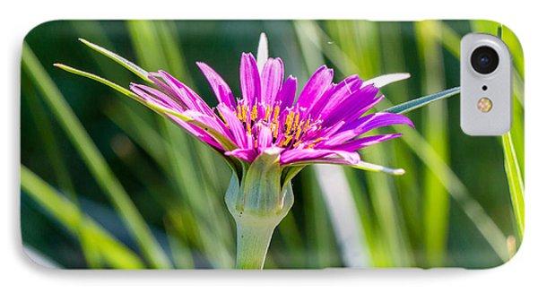 Purple Flower 3350 IPhone Case
