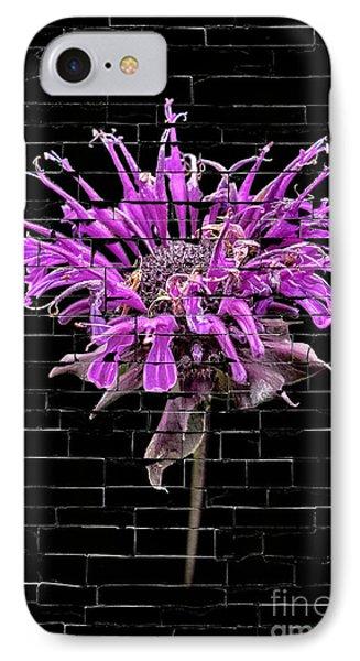 IPhone Case featuring the photograph Purple Flower Under Bricks by Walt Foegelle