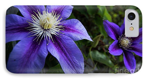 IPhone Case featuring the photograph Purple Flowers by Brian Jones