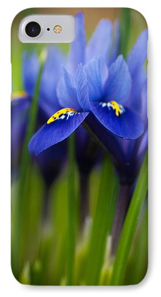 Purple Flowers IPhone Case by Catherine Lau