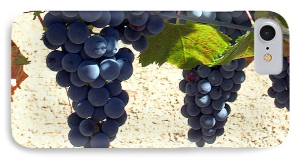 Purple Grapes On Vine IPhone Case by Bonnie Muir
