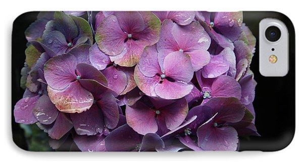 Purple Hydrangea- By Linda Woods IPhone Case by Linda Woods