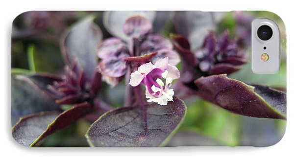 IPhone Case featuring the photograph Purple In Autumn by Joan  Minchak