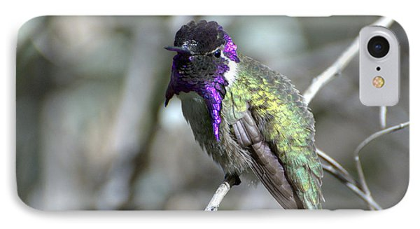 IPhone Case featuring the photograph Purple Iridescence  by Fraida Gutovich