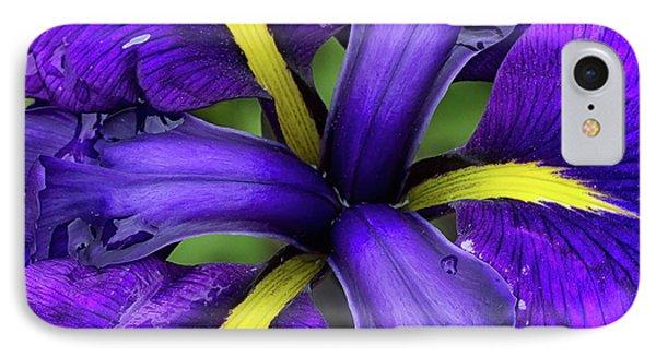 Purple Iris Centre IPhone Case
