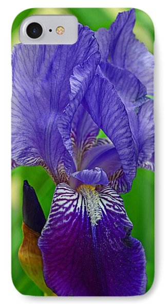 Purple Iris IPhone Case by Lisa Phillips