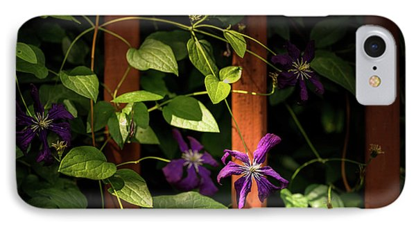 IPhone Case featuring the photograph Purple Jackmanii Clematis by Onyonet  Photo Studios