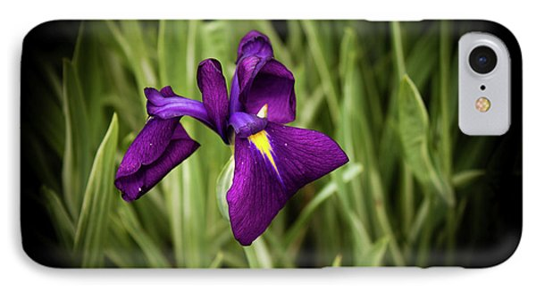 IPhone Case featuring the photograph Purple Japanese Iris by Joann Copeland-Paul
