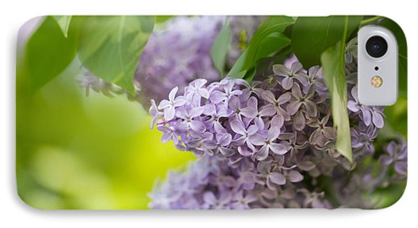 Purple Lilac IPhone Case by Nailia Schwarz