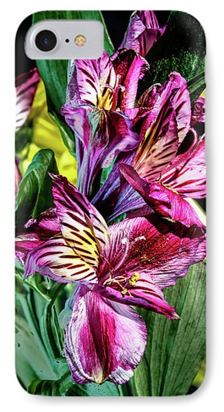 Purple Lily IPhone Case by Mark Dunton