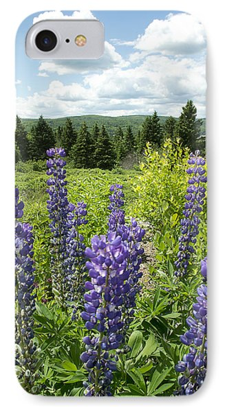 Purple Lupines IPhone Case by Paul Miller
