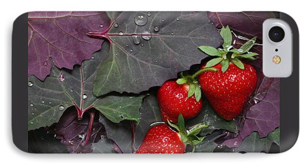 Purple Orach With Strawberries IPhone Case by Patricia Overmoyer