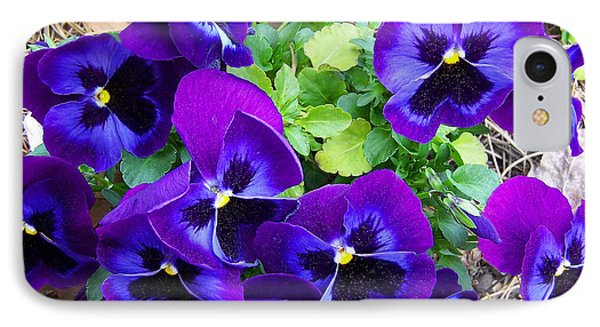 IPhone Case featuring the photograph Purple Pansies by Sandi OReilly