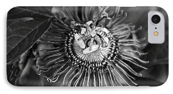 Purple Passionflower Bw IPhone Case by Chris Flees