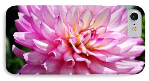 Purple Petals 8x10 IPhone Case by Marty Koch
