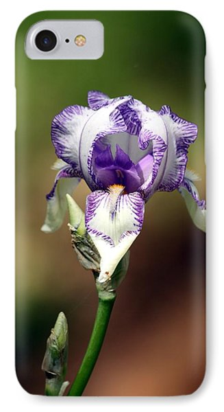 IPhone Case featuring the photograph Purple Striped Bearded Iris by Sheila Brown