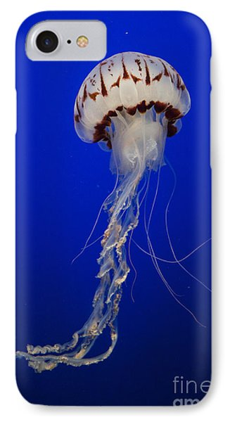 Purple-striped Jelly IPhone Case