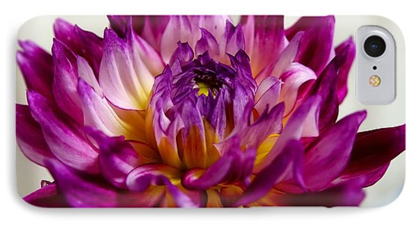 IPhone Case featuring the photograph Purple Sunset Flower 1 by Marianne Dow