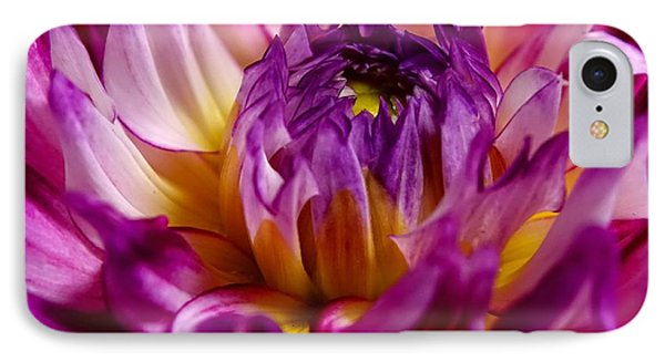 Purple Sunset Flower 2 Phone Case by Marianne Dow