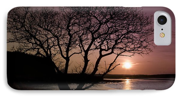 IPhone Case featuring the photograph Purple Sunset With Tree And Lake by Gabor Pozsgai