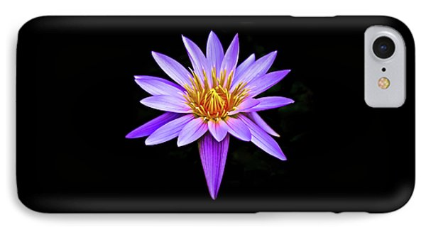Purple Waterlily With Golden Heart IPhone Case