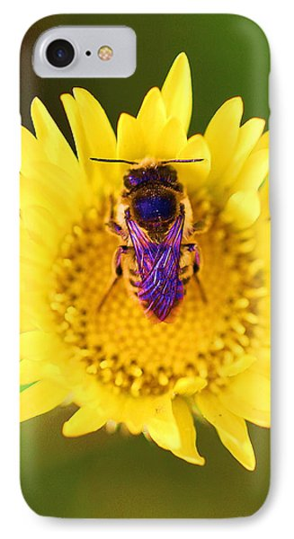 IPhone Case featuring the photograph Purple Wings by John King